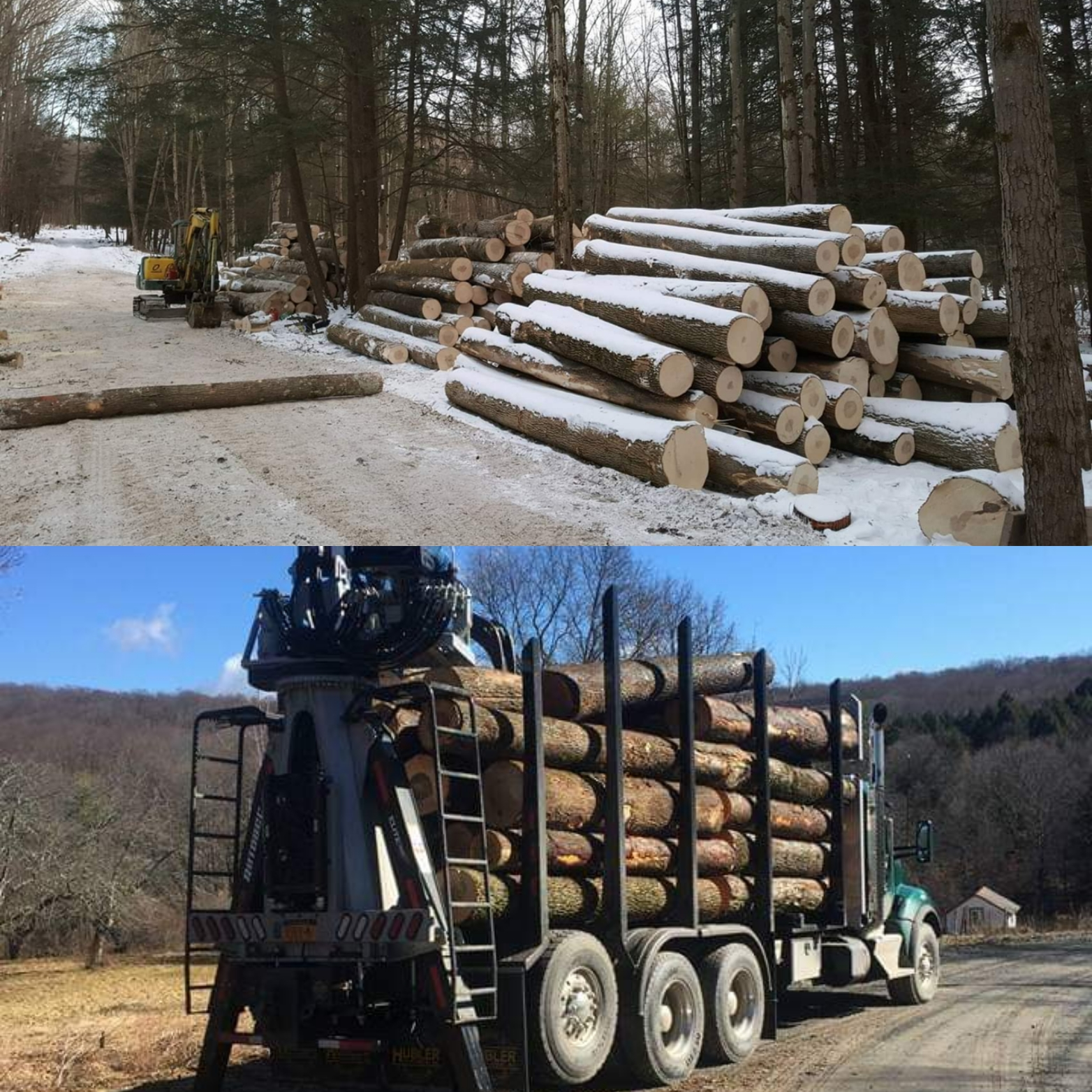logs stacked onto hauling truck