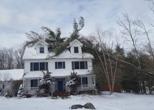 Tree Knocked onto house from winter storm
